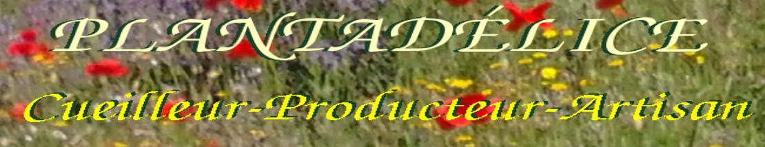 bannière titre plantadélice